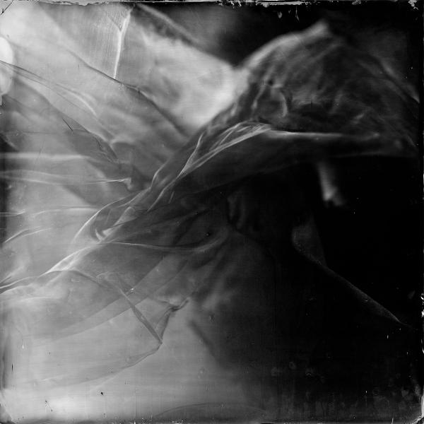 Dama del viento, 2018<br/>Ferrotipo. Positivo directo por colodión húmedo sobre aluminio / Wet plate collodion Tintype
