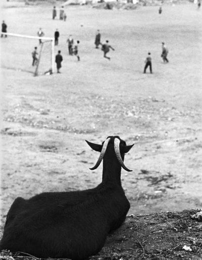 Madrid, 1962<br/>Gelatina de clorobromuro de plata con tratamiento de archivo al selenio / Silver gelatine with archival selenium treatment
