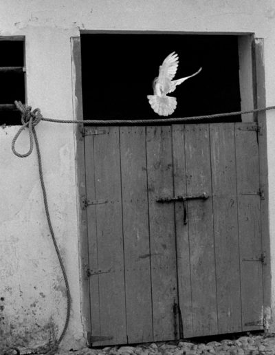 Arcos de la Frontera, Cádiz. 1959<br/>Gelatina de clorobromuro de plata con tratamiento de archivo al selenio / Silver gelatine with archival selenium treatment