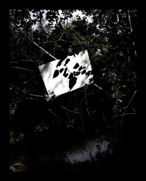 Ombra Amb Reflex D'ombres, 2006<br/>Fotografía color. Impresión Giclèe / Colour Photograph. Digital Print