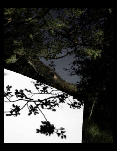 Ombra Textural, 2006<br/>Fotografía color. Impresión Giclèe / Colour Photograph. Digital Print