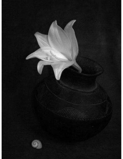 Bodegon nº04, 2006<br/>Impresión de tintas de pigmentos / Inkjet print