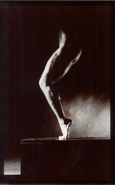 S/T, 1987<br/>Papel baritado virado al selenio / Selenium toned baryta paper