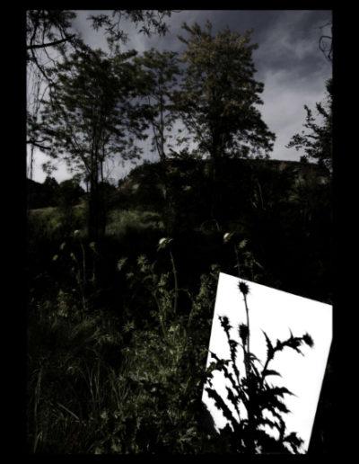 Sota L'ombra De Miralls Foscos, 2006<br/>Fotografía color. Impresión Giclèe / Colour Photograph. Digital Print