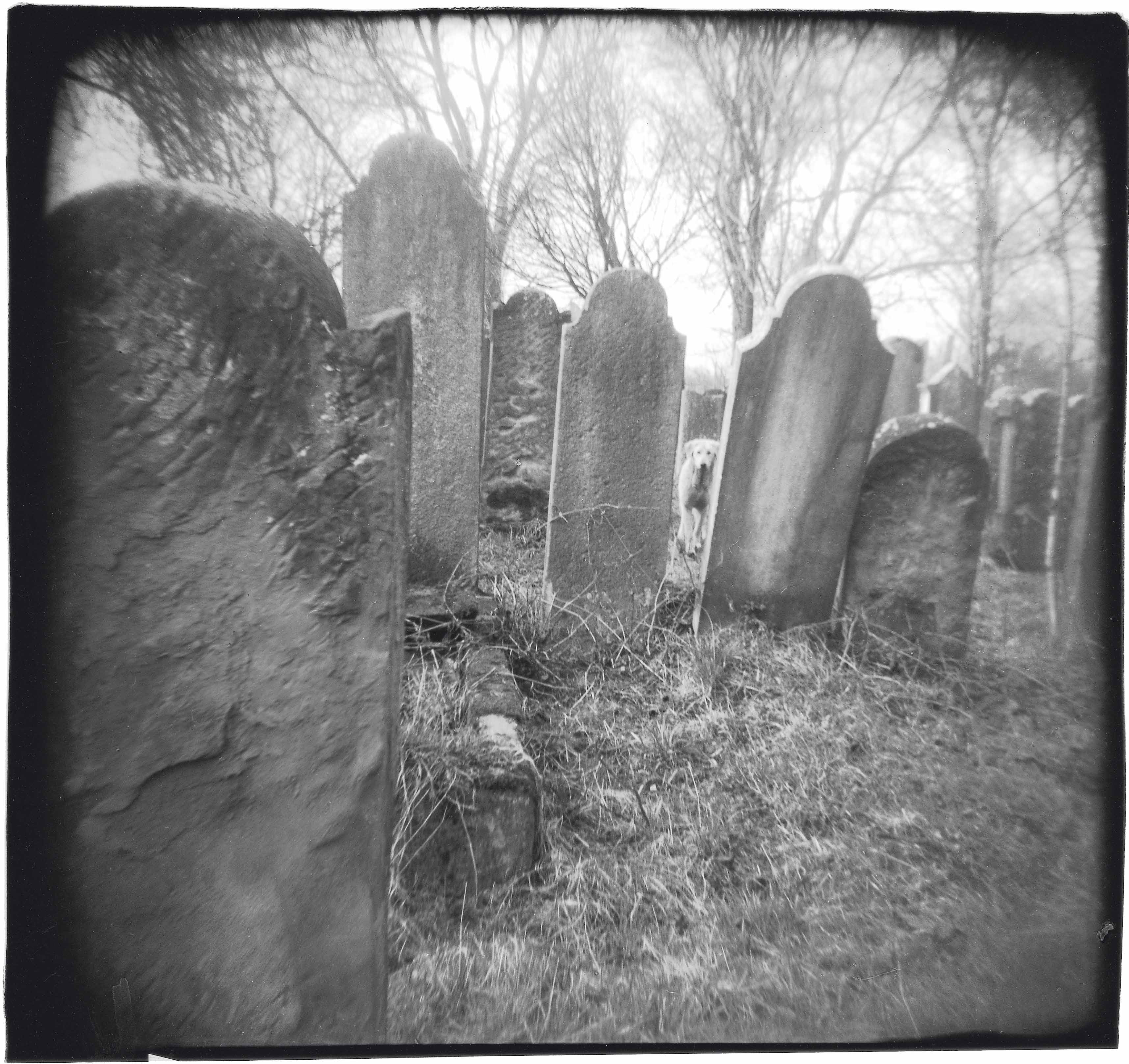 Chance meeting in Jewish cementery, 2001<br/>Gelatina de plata / Silver gelatin