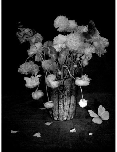 Bodegón nº08, 2006<br/>Impresión de tintas de pigmentos / Inkjet print