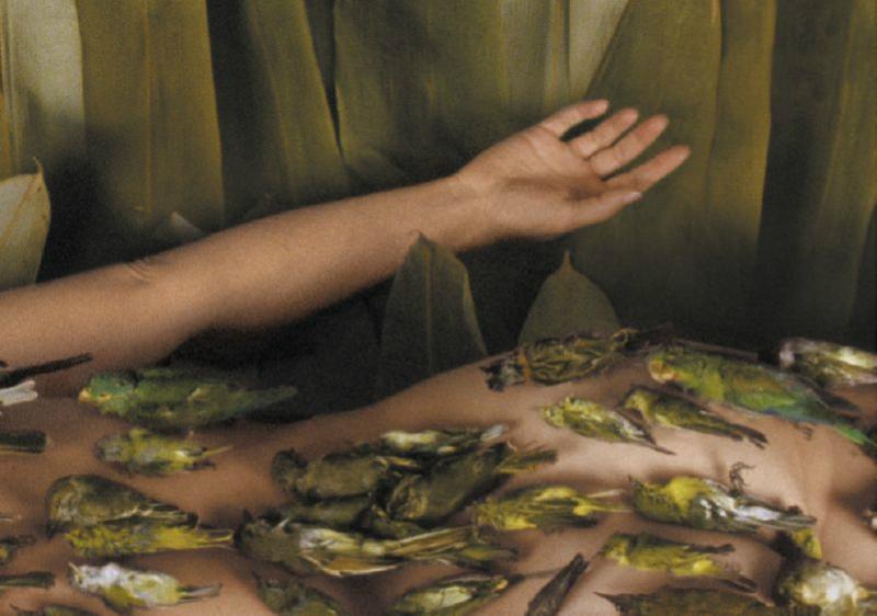 El sueño, 2002<br/>Impresión de tintas de pigmentos
