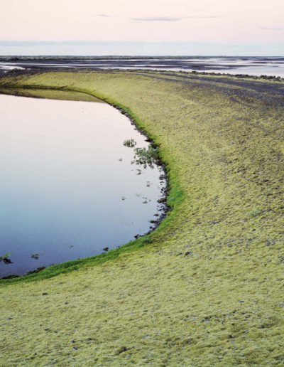Green Crescent, 2006<br/>Impresión digital