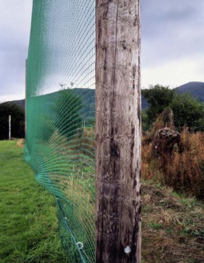Green Net, 2006<br/>Impresión digital