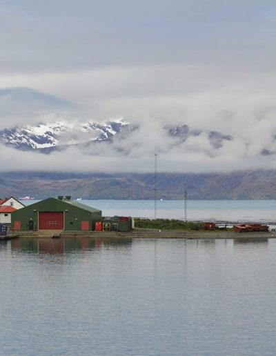 Grytviken 4, South Georgia, 2014<br/>