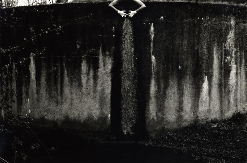 Lacustre, 1978<br/>Giclée