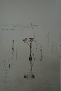 Nusa Lembongan 1, 2004. Serie Pêcheur D'algues, Bali, 2004<br/>Impresión de tintas de pigmentos / Inkjet