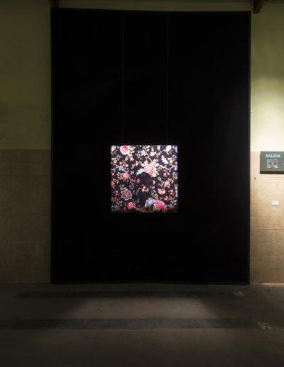 Nocturne, 2009<br/>