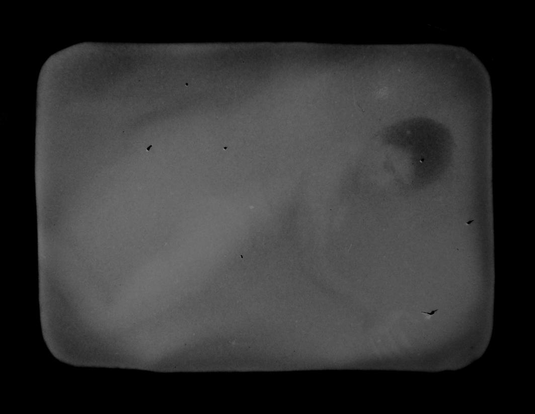 Ninfas, 2011<br/>Fotografía analógica con tratamiento en la copia de fibra / Analogic photograph on treated fiber paper