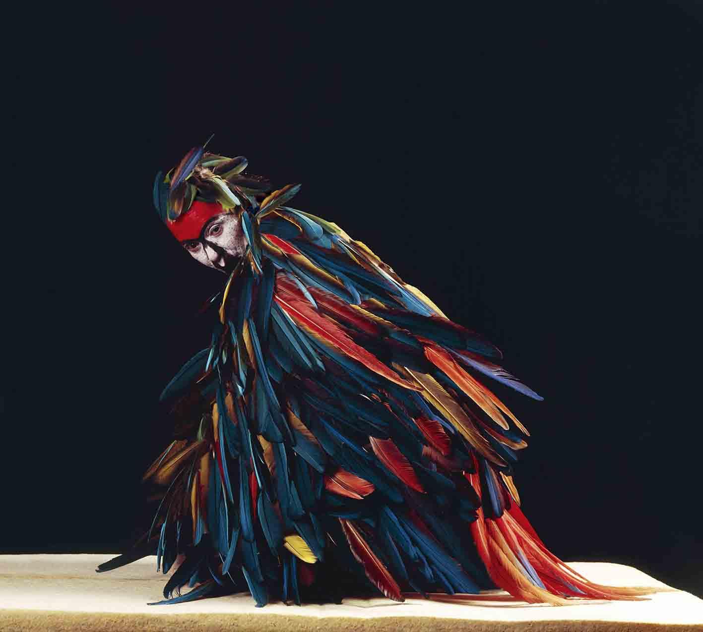 Papagallo, 2004<br/>Impresión de tintas de pigmentos.