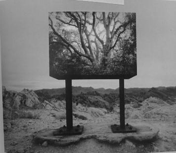 Untitled, 1991<br/>Gelatina de plata / Silver gelatin print