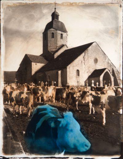 Vache du Sena, 2002<br/>Impresión de tintas de pigmentos / Inkjet