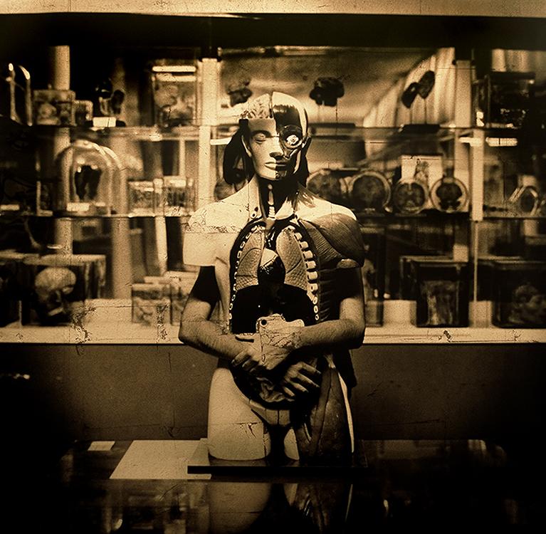 La desolación de su dulce voz, 2004<br/>Película ortocromática / Orthocromatic Print