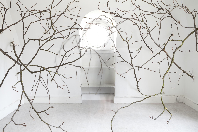Atelier V, 2013<br/>C-print.
