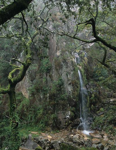 Peneda Gerés. Portugal, 2004<br/>Giclée