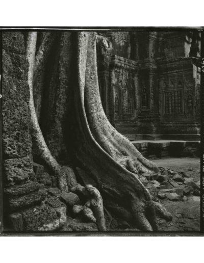 Angkor<br/>