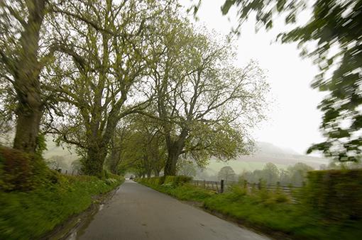 Achlerneed, Highlands. Escocia, 2006<br/>Impresión de tinta / Inkjet