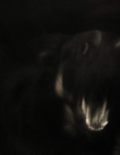Caín, 1989<br/>Gelatina de plata / Silver gelatin