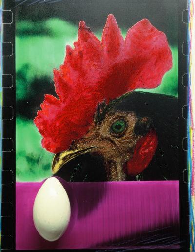 El gallo de Jorge<br/>Gelatina de plata coloreada / Silver gelatin hand coloured