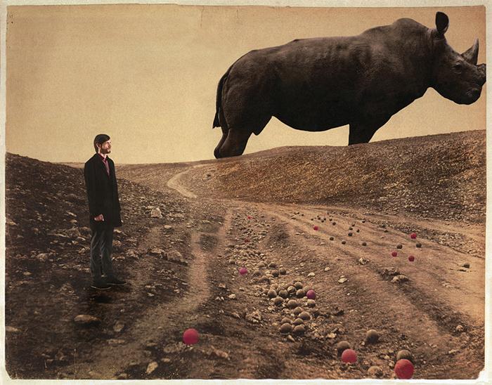 El sueno rojo de Rino - Rhino's red dream<br/>