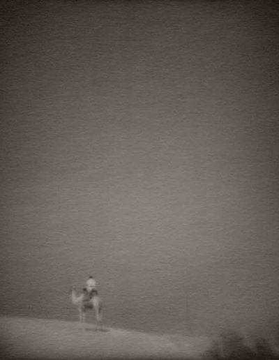 Le comte Lazlo au loin, 2013<br/>Gelatina de plata / Silver gelatin