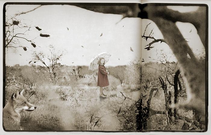 No leiste los cuentos - You didnt read the tales<br/>