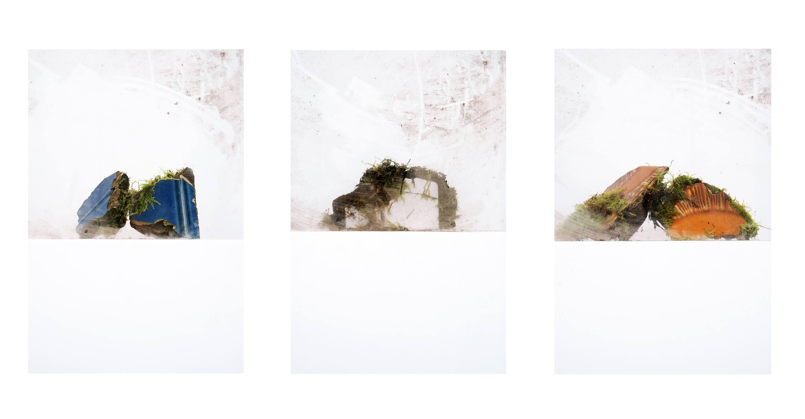Dalila Gonçalves. Living stones, 2010<br/>