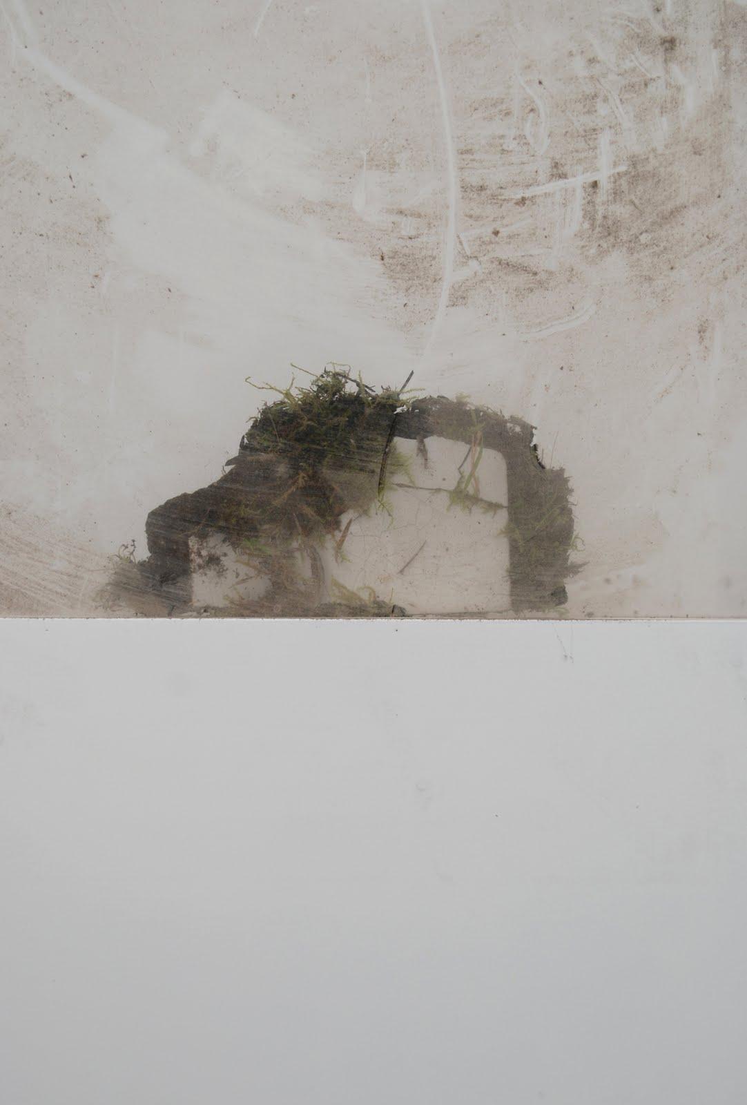 Dalila Gonçalves.Living stones, 2010<br/>