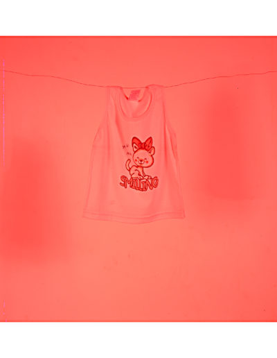 Camiseta<br/>