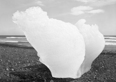 Brad Temkin. Photographs