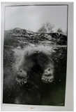 Polar Bear Feet. Central Park, NY, 1988<br/>