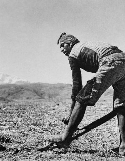 Campesino con arado de pie, 1934<br/>