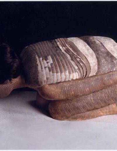 Armadillo, 2001<br/>Performance fotográfico con pintura corporal. Impresión sobre seda