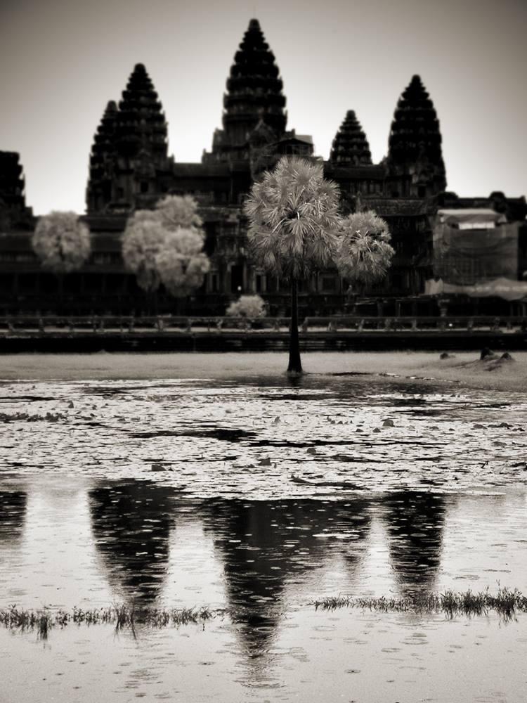 S/T Angkor, 2008<br/>Platinotipia / Platinum