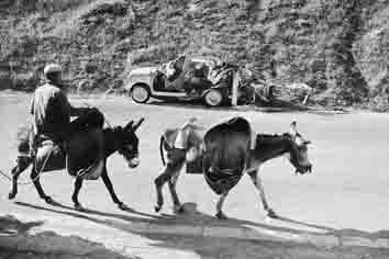 Aracena 1959<br/>