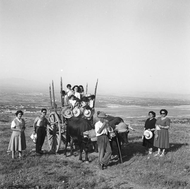 Bartolomé Ros Amador. Cortijo Balsaín. La Zubia. Granada, 1950<br/>