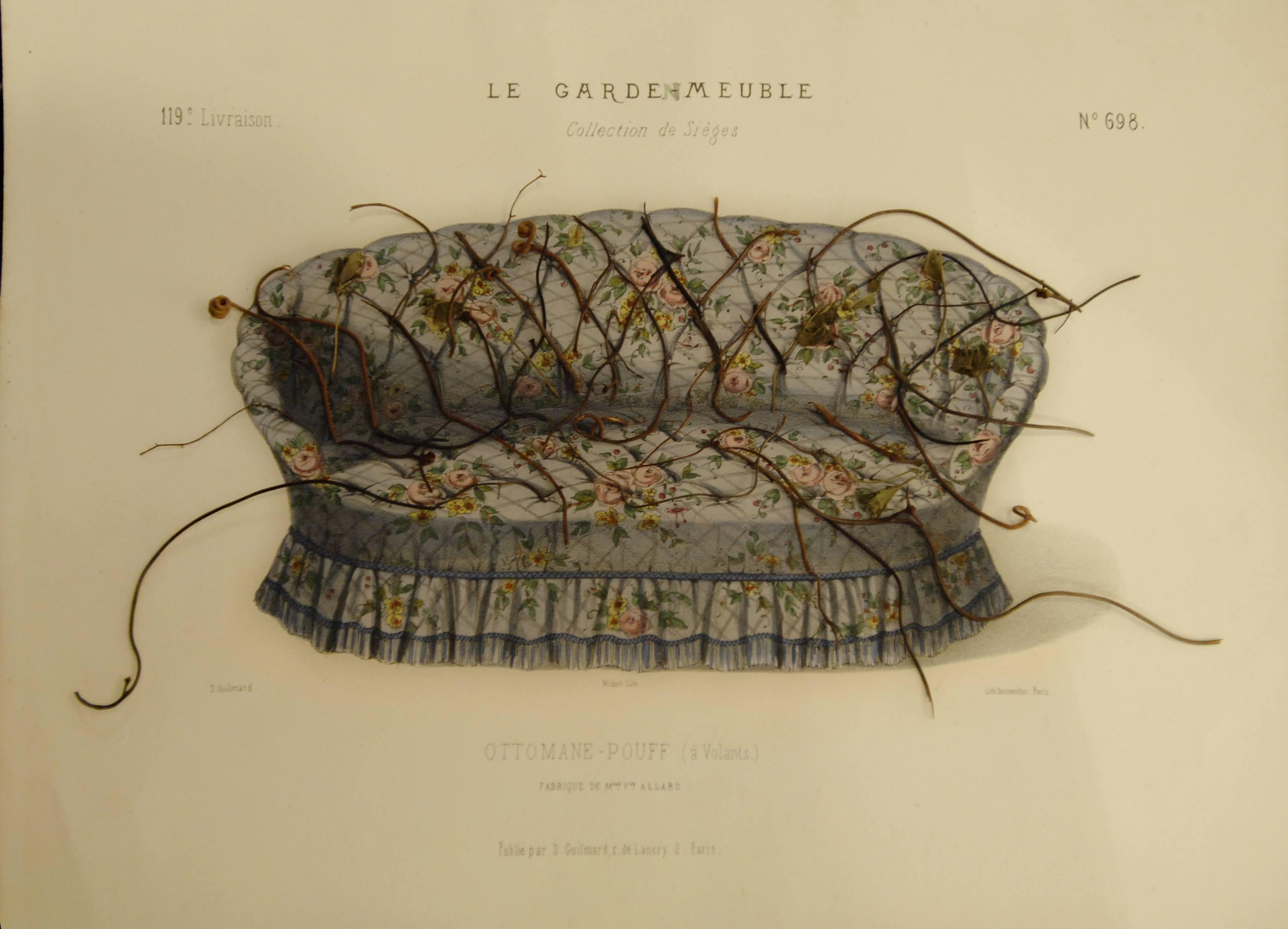 Le garden mueble, 2015<br/>Tinta, dibujo y espinas de puercoespín.