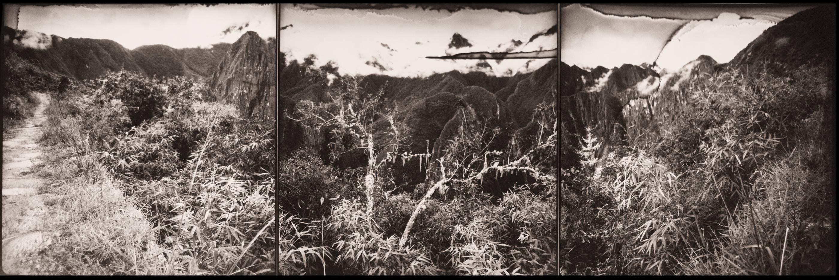 Camino del Inca, 1994<br/>Virado de oro / Golden Toner