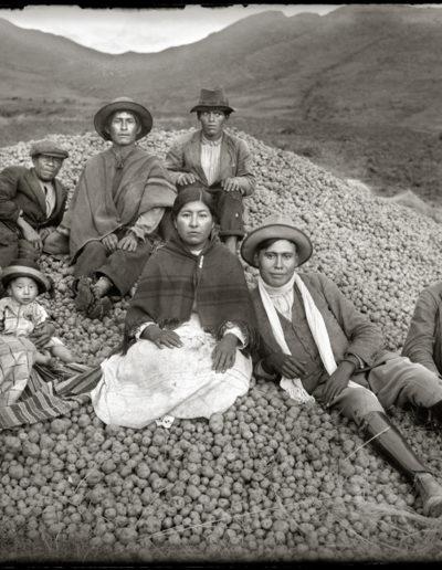 La cosecha de papas, 1934<br/>