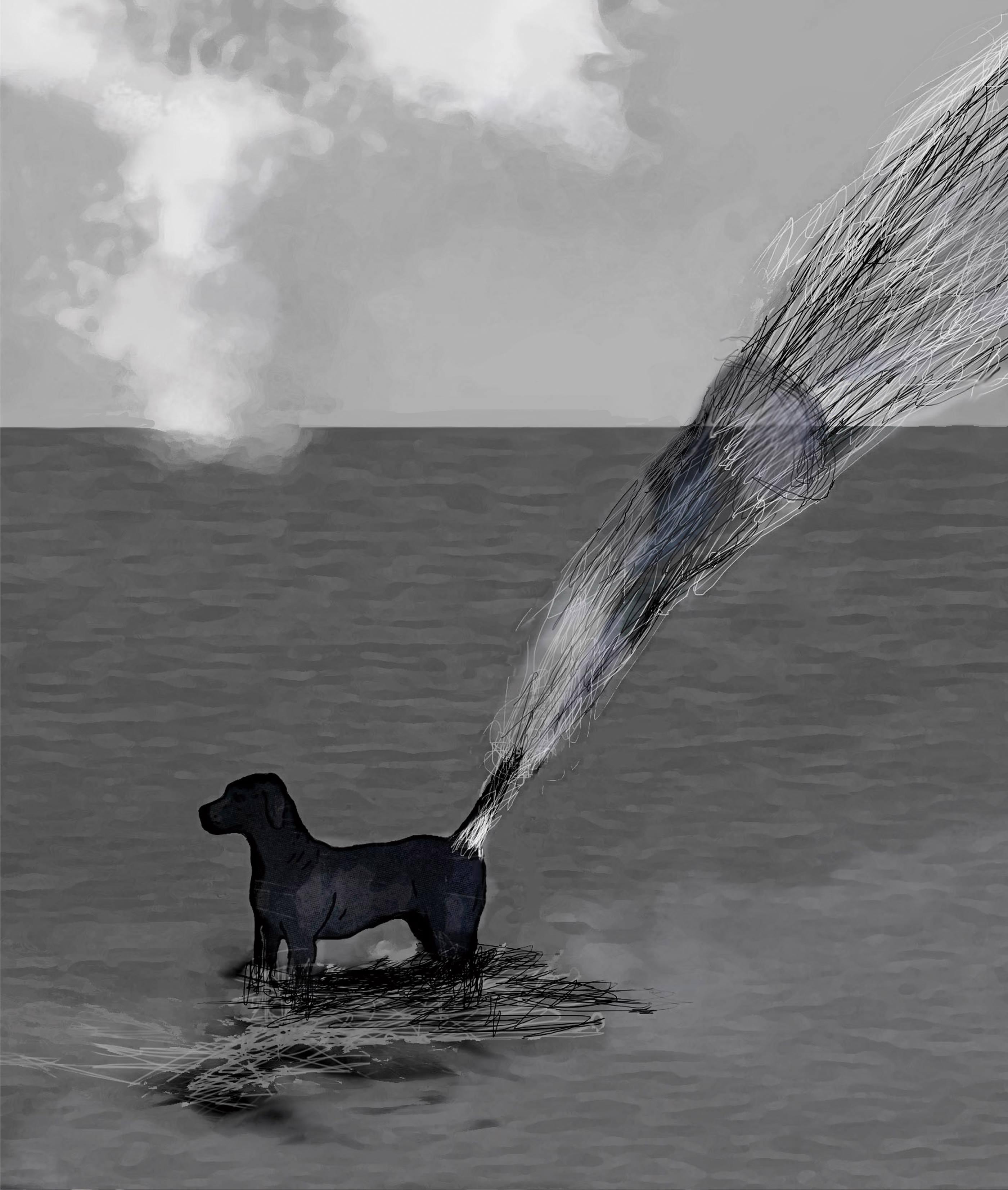 El último perro del Mediterráneo<br/>Técnica mixta / Mixed technique