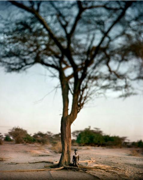 El árbol de la ciencia. Mururli, 2005<br/>Impresión de tintas de pigmentos / Inkjet print