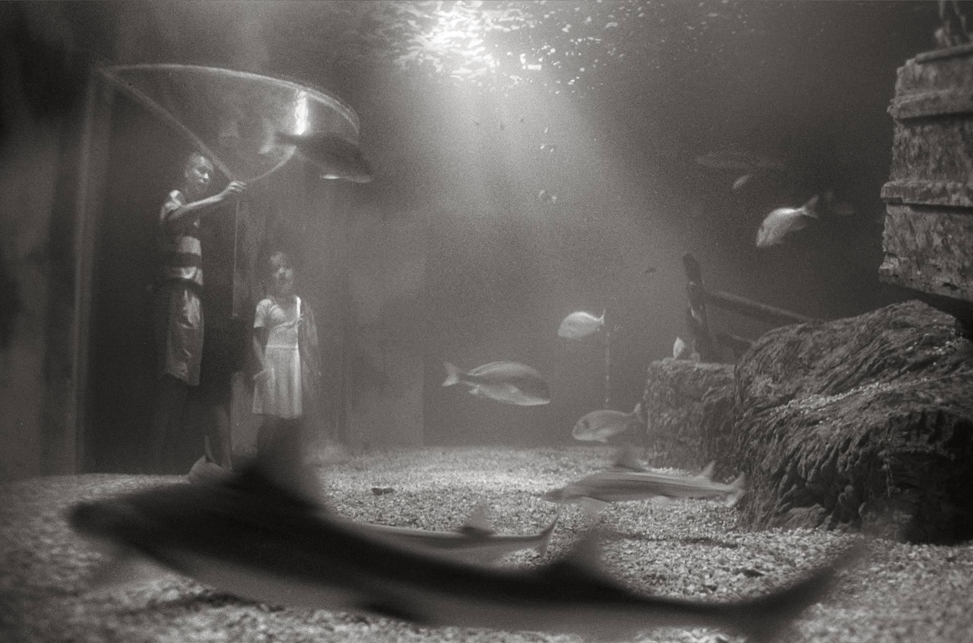 Benalmádena, 1996<br/>Gelatina de plata / Silver Gelatin.
