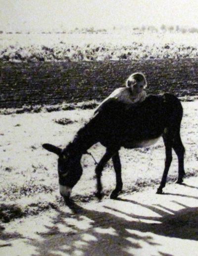 Sant Boi de Llobregat, 1956<br/>Gelatina de plata / Silver gelatin