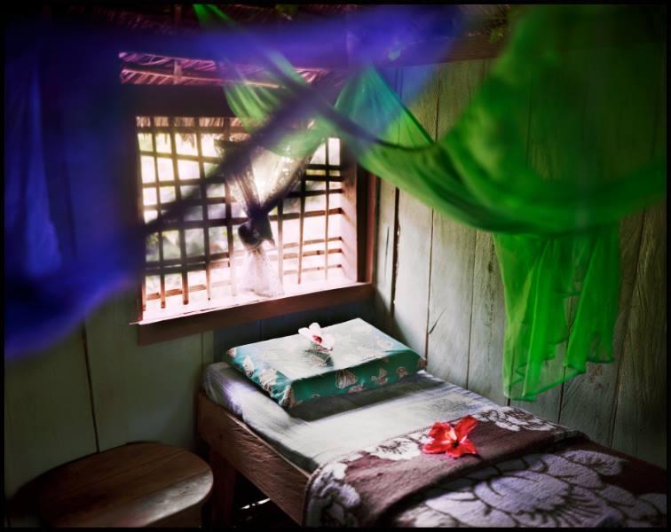 Jungle Oasis<br/>Impresión de tintas de pigmentos / Inkjet print