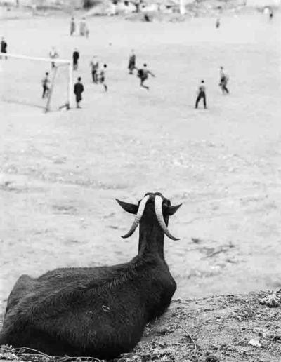 Madrid 1962<br/>